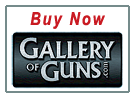 Buy Now 380ACP carbine - Hi-Point Firearms Model 3895